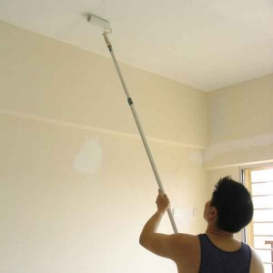 interior wall painting singapore